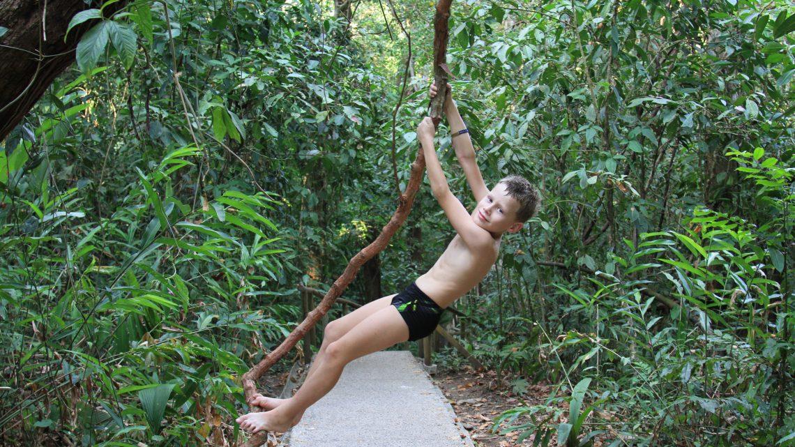 Nature sauvage au Costa Rica